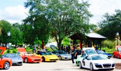 Gathering of exotic car owners in Celebration