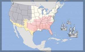 Colorful map of the borders of the 48 United States against a blue ocean