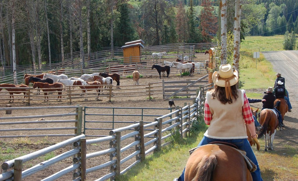 Crystal Waters Top Guest Ranches for Sale  Country Homes