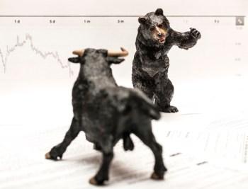 Bull Vs Bear stock market concept
