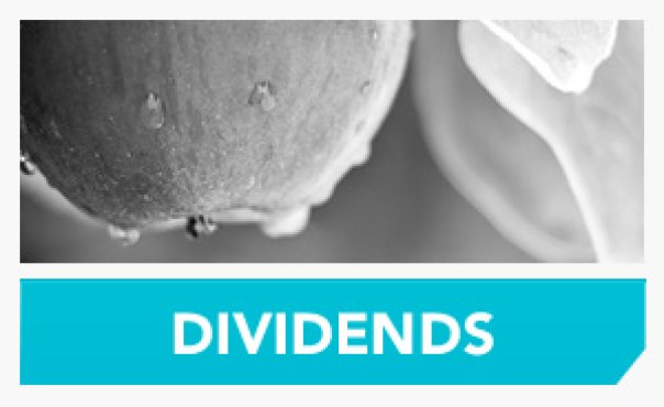 blog-see-more-dividends