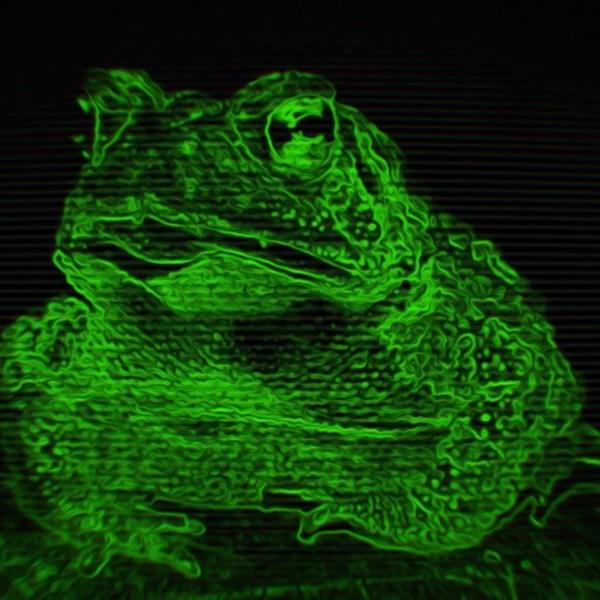 Night belongs to the Toads