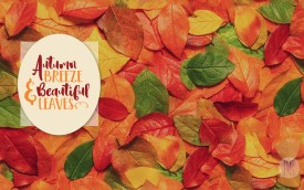 October Wallpaper: Autumn Breeze & Beautiful Leaves - Simple