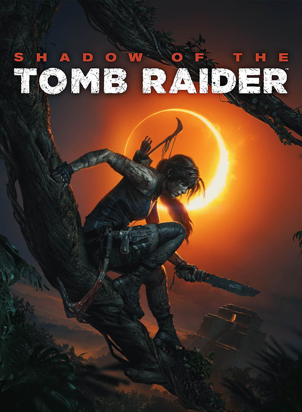 Tomb Raider 2018 Streaming Vf : raider, streaming, Telecharger, Raider, (2013), Vidéo, Français