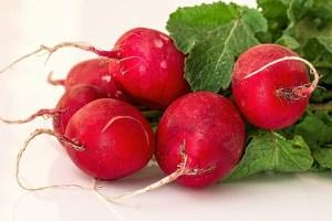 healthy-diet-foods-radish