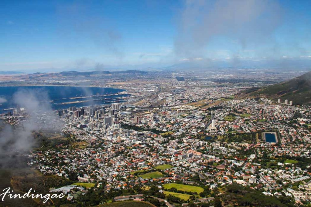 The View from Lions Head