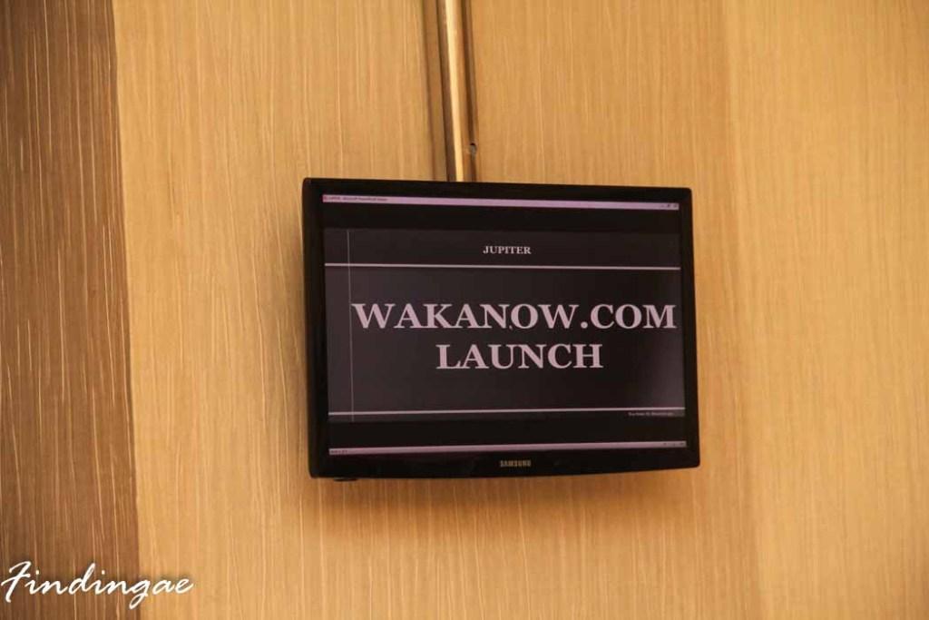 Wakanow Launch