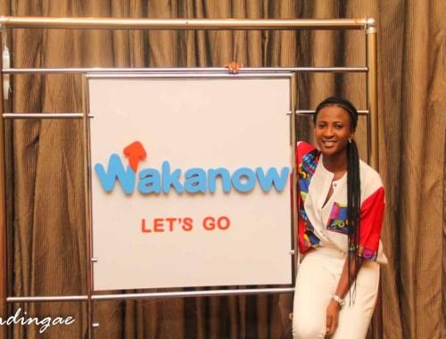 Wakanow logo