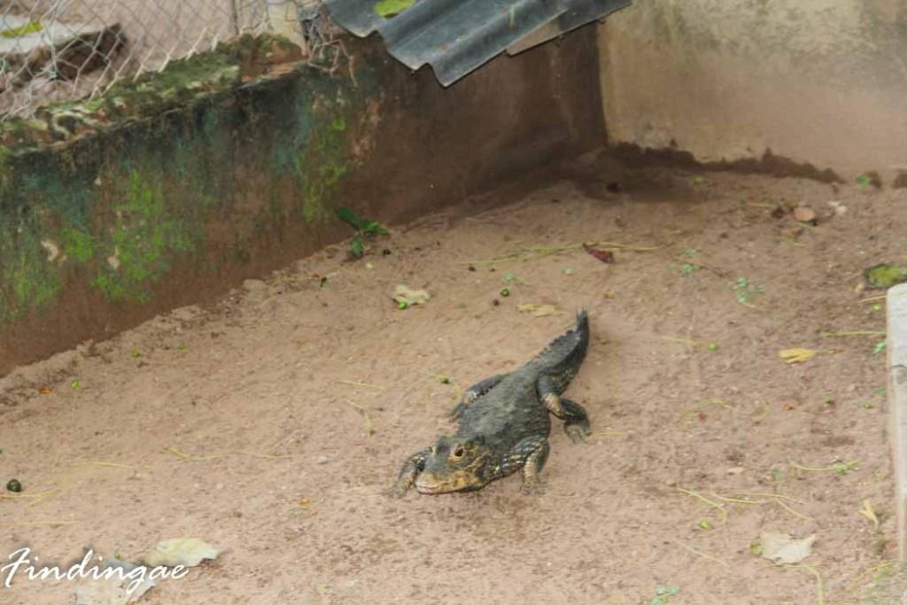 Agodi Garden, Ibadan, Oyo State
