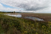 Pegwell Bay, July 2015-35