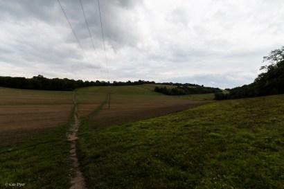 Ranscombe-8
