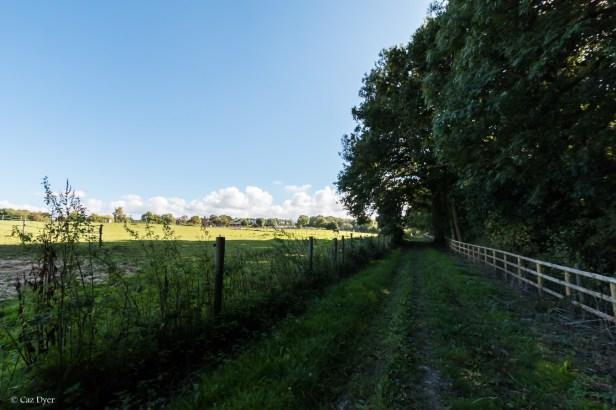 Darnley Trail-4