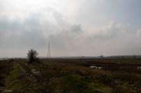 Oare Marshes-6