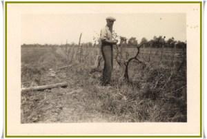 CLARKE Hugh Senior Vineyard Virgil with frame