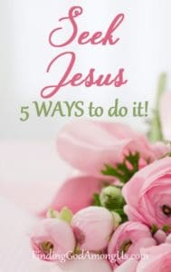 What does seeking Jesus mean? How do you seek Jesus?. Learn how to seek God with your whole heart and how to get closer to Jesus with these five tips.