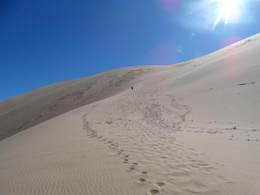 Aufstieg Khongoryn Els Sanddüne Gobi Wüste