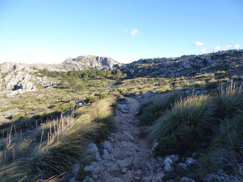 Heide Mallorca kleine Wanderung im Valldemossa