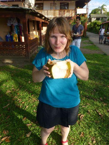 Kokosnuss Tortuguero