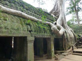 Angkor Tha Prom