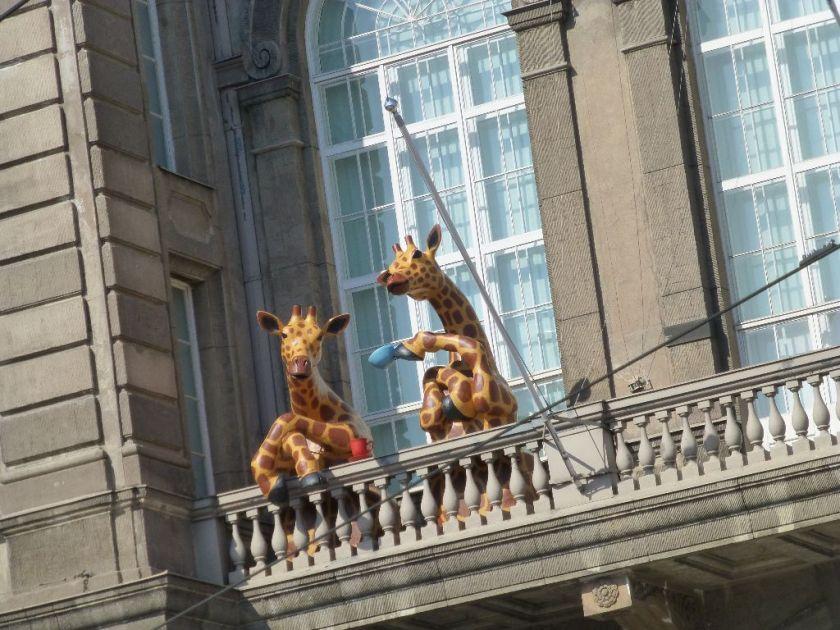 Helsinki Giraffen