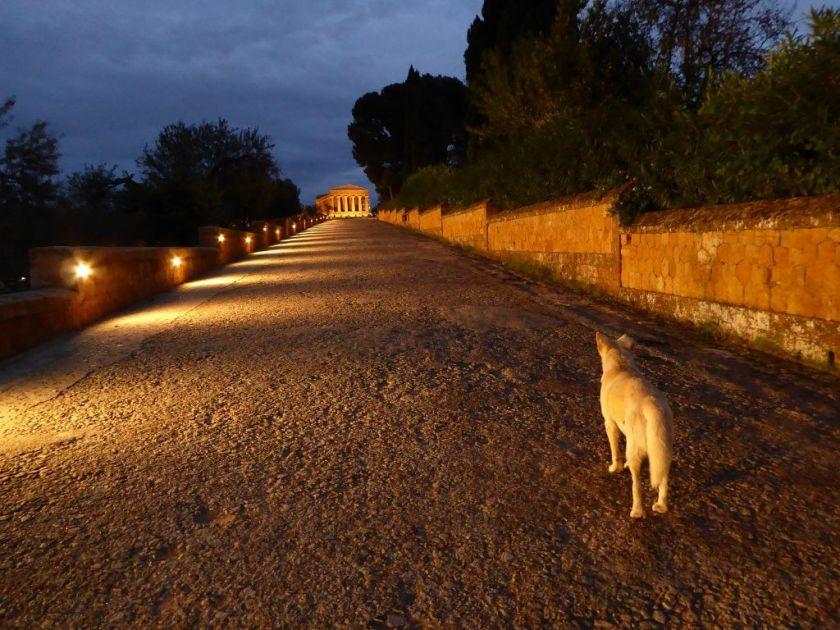 Tal der Tempel Concordia Nachts