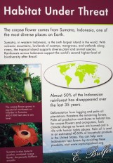corpse flower sign5