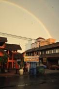 Goodbye rainbow in a cloud of screaming birds