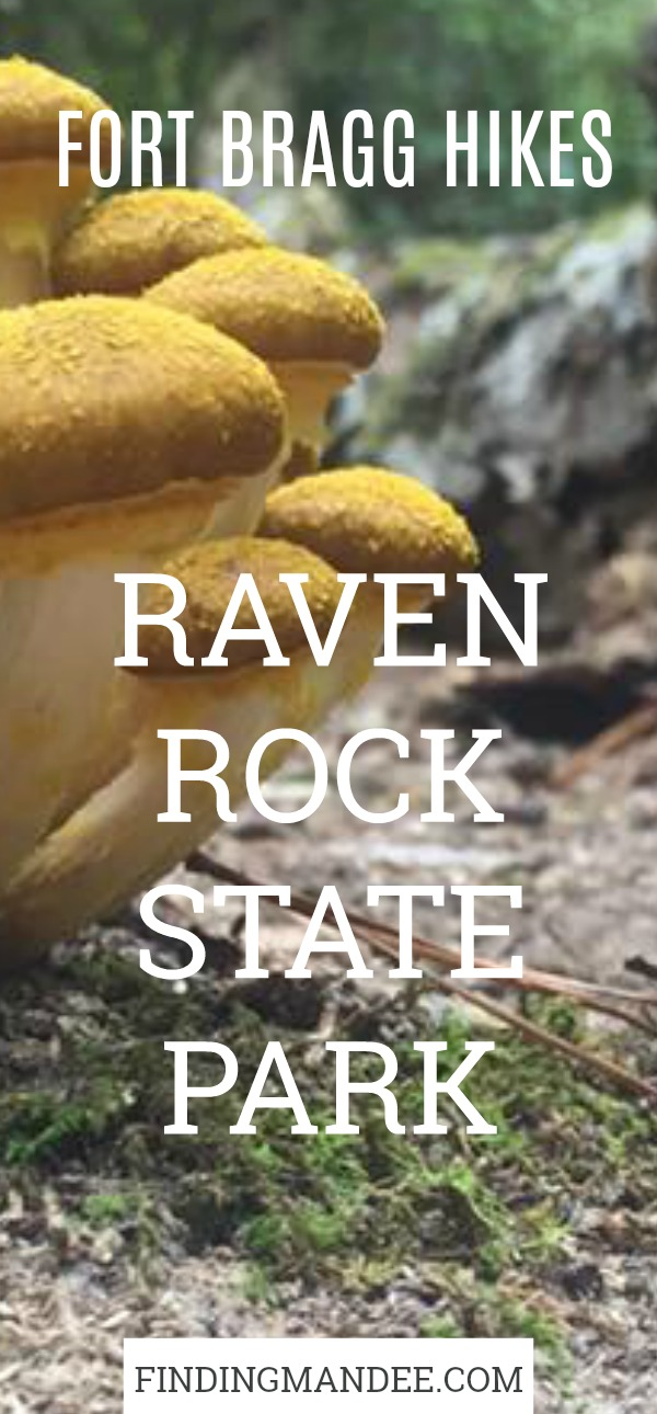 Our Hike at Raven Rock State Park | Finding Mandee | Fort Bragg Hikes