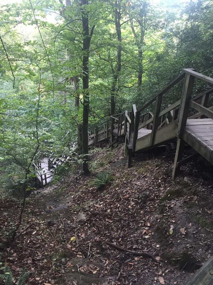 stairs to Cape Fear River Raven Rock State Park, NC