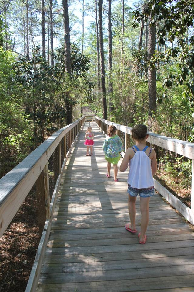 boardwalk at Falling Waters State Park in Northwest Florida