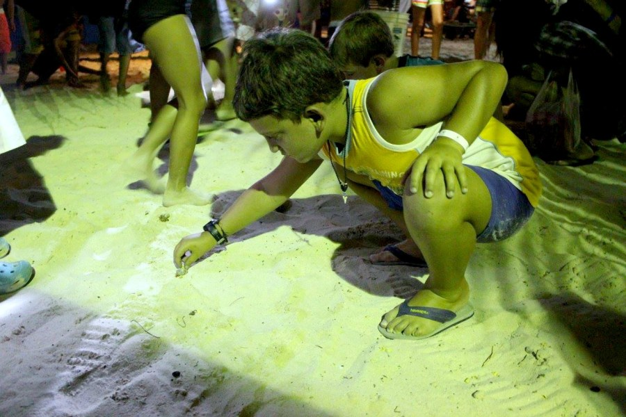 things to do in Roatan crab races