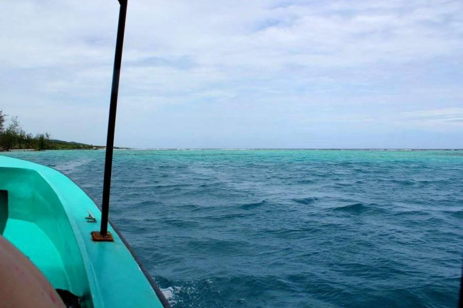 things to do in Roatan snorkel