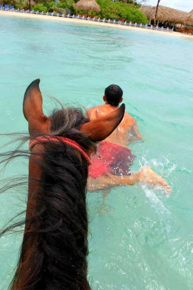 things to do in Roatan horseback riding on the beach