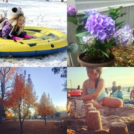 seasons in North Carolina