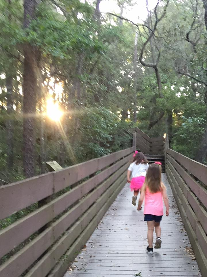 go for a walk at Bay Bluffs Park in Pensacola, Florida