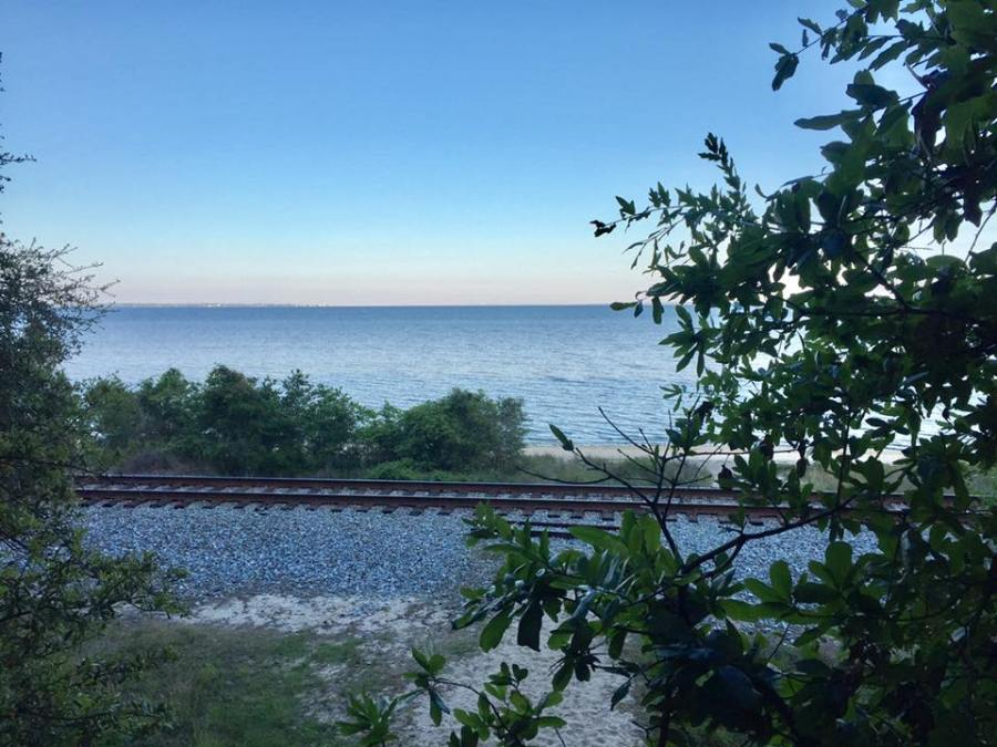 view of the bay from Bay Bluffs Park boardwalk