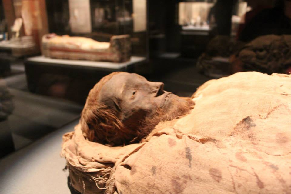 mummy at the museum of natural history in Houston, TX