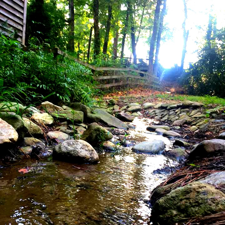 Beautiful stream at Gillis Hill Farm in Fayetteville, North Carolina.