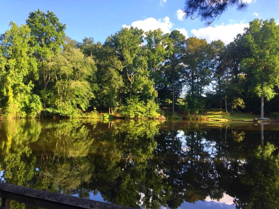 the grist mill pond at Gillis Hill Farm in Fayetteville, NC