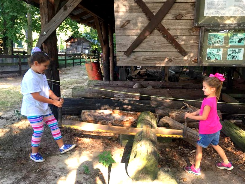 Things to do in Fayetteville: Go to Gillis Hill Farm.