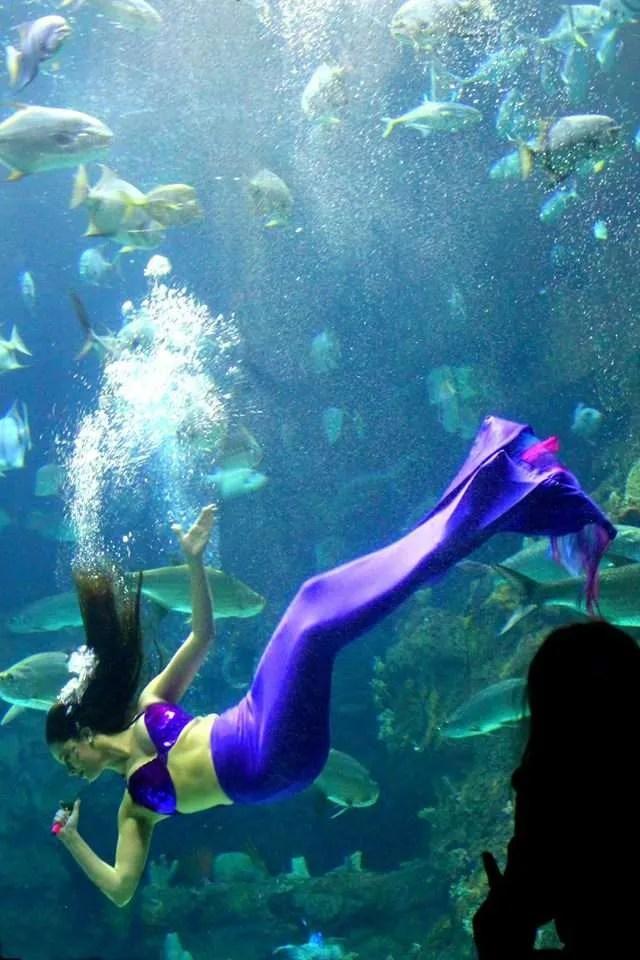 A mermaid at Fort Fisher in North Carolina.