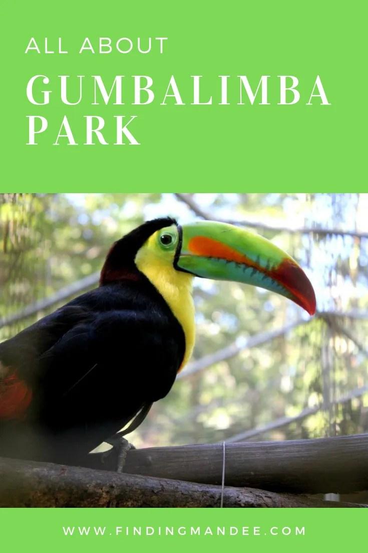 All About Gumbalimba Park in Roatan, Honduras