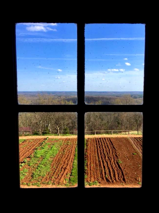 The vegetable garden at Monticello.