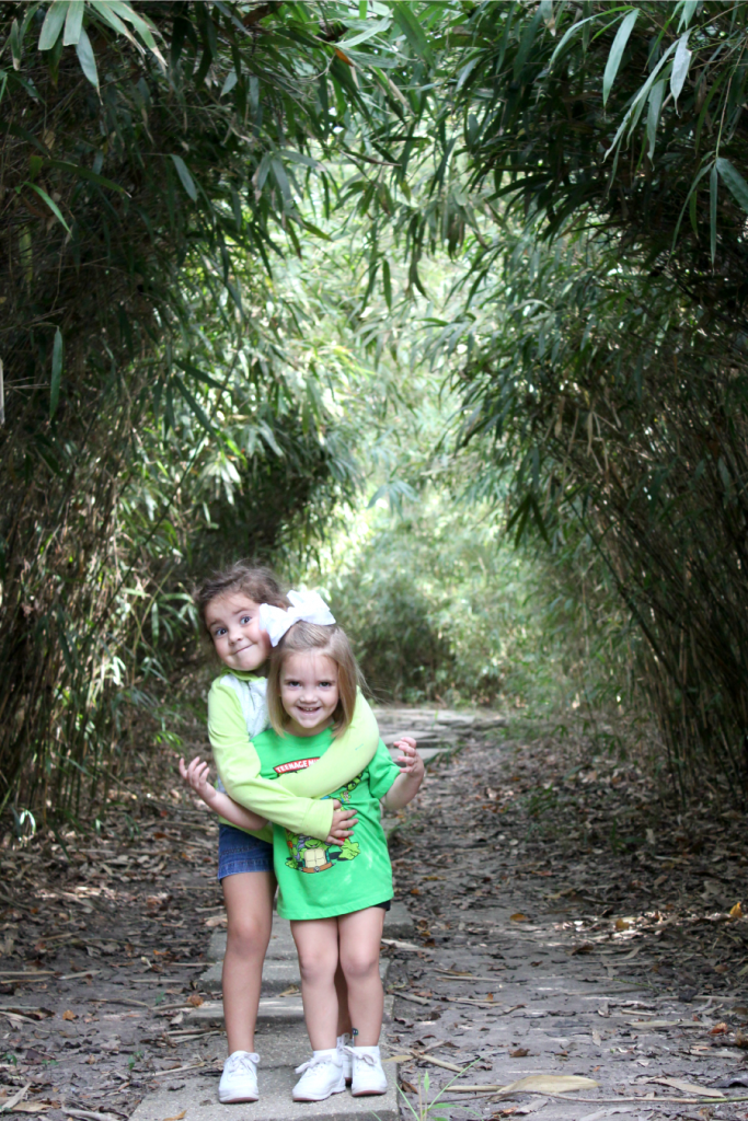 In the bamboo thicket at Jungle Gardens.