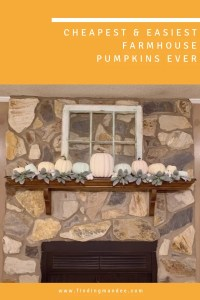 The Cheapest and Easiest Farmhouse Pumpkins Ever | Finding Mandee