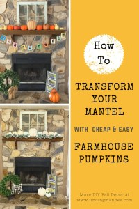 How to Transform Your Mantel with Painted Pumpkins | Finding Mandee