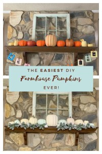 How to Make the Easiest DIY Farmhouse Pumpkins Ever!   Finding Mandee