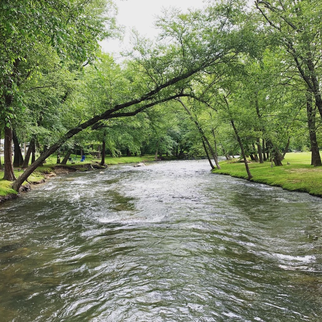 Summer camping in Asheville along the Swannanoa River.