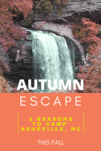Autumn Escape: 3 Reasons Fall Camping in Asheville, NC is a Great Idea!   Finding Mandee