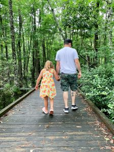 The Flytrap Trail at Carolina Beach State Park travels along several boardwalks and is wheelchair accessible!